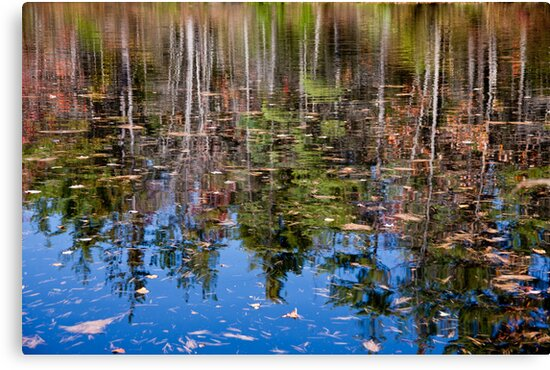 Reflection Pond by phil decocco