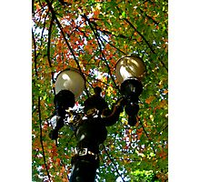 autumn lamppost  Photographic Print