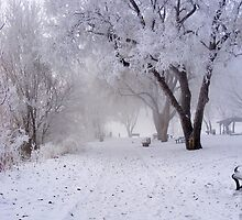 Winter In The Park by stacyrod