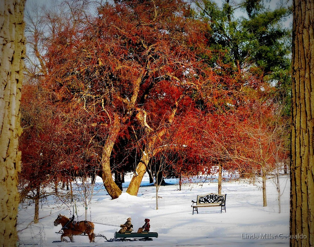 Sleigh Ride In The Snow by Linda Miller Gesualdo