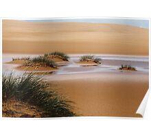 Sandy Cape Sand Dune Tasmania Poster