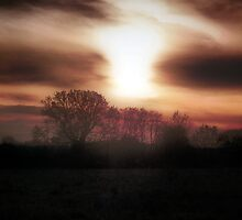 Sun Setting...Mist Falling by naturelover