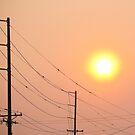 sunsmoke 2 by Bruce  Dickson