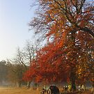 ~ Autumn morning on Church Meadow by Christopher Cullen