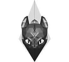 Norse Arrow Toothless Photographic Print