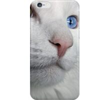 Do Cats Wonder About The Meaning of Life? iPhone Case/Skin