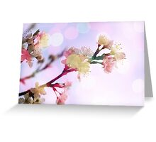 Bokeh Blossom #1 Greeting Card