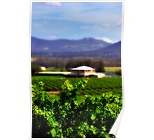 Hunter Valley | Wine Country  Poster