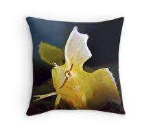 Golden Weedfish Cristiceps aurantiacus Throw Pillow