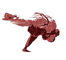 Judo Throw in Gi 2 Red Photographic Print