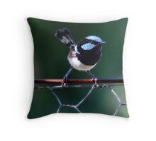 Blue Wren Throw Pillow