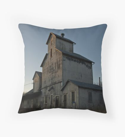 Cato Mill Throw Pillow