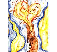 Burning Love Photographic Print