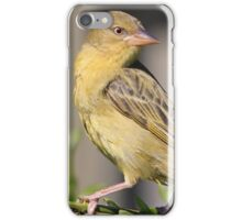 Cape Weaver iPhone Case/Skin