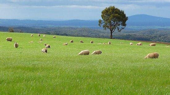 Greener Pastures by Georgie Hart