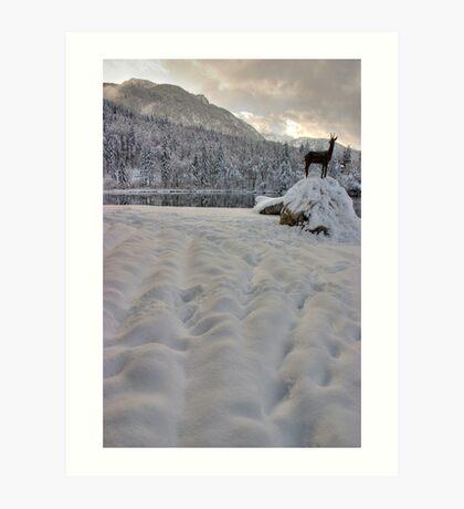 Lake Bohinj, Triglav National Park, Slovenia Art Print