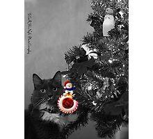 Holiday Kitty Photographic Print
