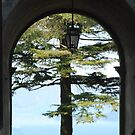 Beyond a Medieval Gate-Montefiascone, Italy by Deborah Downes