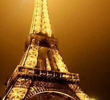 Eiffel Tower NYE 2010 ~ Paris, France by Jennifer Martindale