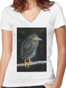 Baby Green Heron Women's Fitted V-Neck T-Shirt