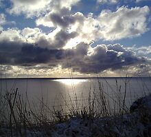 Snowstorm out to sea by Merice  Ewart-Marshall - LFA