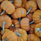 Pumpkins by Bill Colman