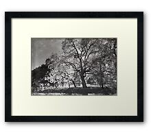Maybe We Can Try Again Framed Print