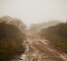 Foggy Day, Muddy Lane. by Billlee