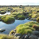 Cairndoon Bay pools by sarnia2