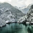 Winter mountain Landscape green water white snow by Francesco Malpensi
