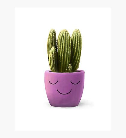 Sweet Cactus  Photographic Print