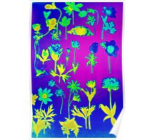 flowers and decorations Poster