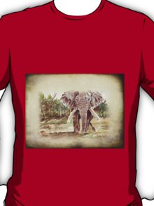 Africa's Giant T-Shirt