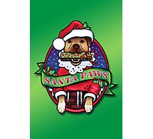 Santa Paws Photographic Print