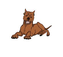 Pit Bull - Red Photographic Print