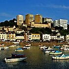 torquay harbour by JohnHDodds