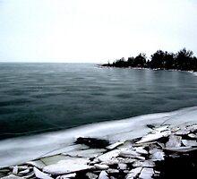 Liquid Pieces - Lake Erie by Jonny  McKinnon
