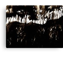 fuji.... through a black forest Canvas Print