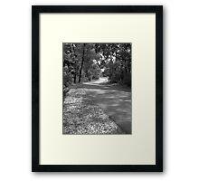 The Road from Kamaroi Framed Print
