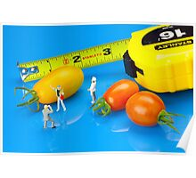 Tomato harvest little people and food Poster