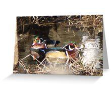 Sweet Wood Ducks Greeting Card