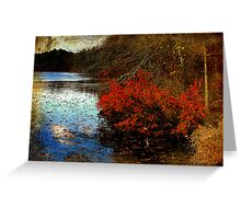 Waterside Symphony Greeting Card