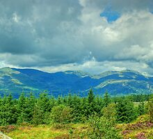 The View from Carron Crag by Jamie  Green
