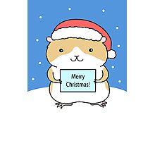 Santa Hamster Photographic Print