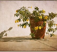 Pot of Yellow Flowers with Vintage Look by Gerda Grice
