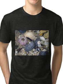 She Sells Sea Shells by the Sea Shore Tri-blend T-Shirt
