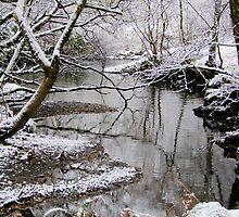 wild winter snowdonia by leunig