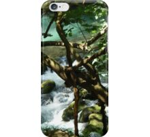 Waterfall and Trees iPhone Case/Skin