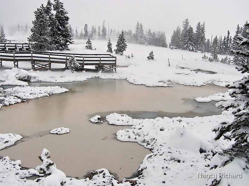 Yellowstone thermals by Nancy Richard