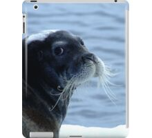 Fluffy Bearded Seal iPad Case/Skin